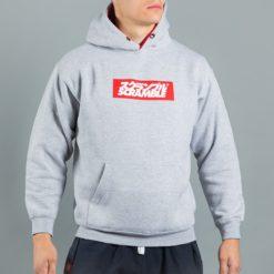 box-logo-hoody-grey-4