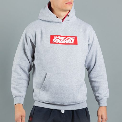 Box Logo Hoody Grey 4