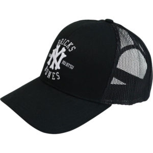 Hyperfly Snapback NYC Brick And Bones 1
