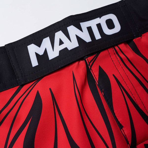 Manto Shorts Multi Gradient 3
