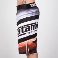 Tatami Shorts Collision 3
