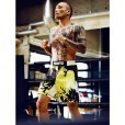 eng_pm_MANTO-fight-shorts-KRAZY-BEE-black-yellow-729_7