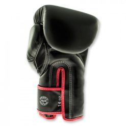 fairtex black red boxinggloves back 1
