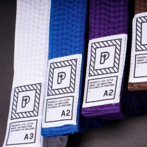 progress bjj belts